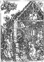Durer, Narodziny, 1505