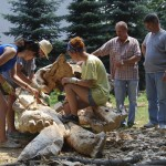 During the Sculpting Workshop in 2012, in the green areas near the ZSP building in Lublin, three students are carving wood. Next to them are teachers: vice-director Krzysztof Dąbek and head Waldemar Arbaczewski. It is a hot day in June. Clicking on the image thumbnail will display the enlarged photo.